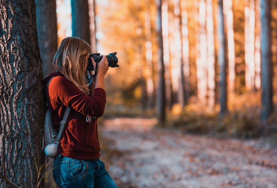 fotopułapka zamontowana w lesie